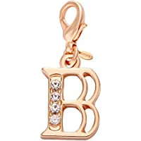 SENFAI 26 Alphabet English Letters Crystal First Initial Name Charms for Bracelet,Necklace,Zipper Puller