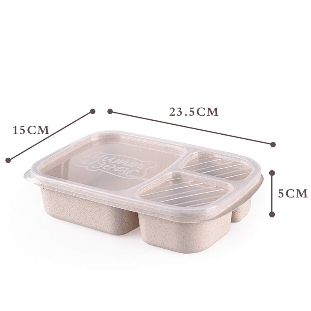 DIYOO Lunchbox Brotdose Bento Box f/ür Kinder und Erwachsene Mit 3 F/ächer Auslaufsicher Mikrowelle Gefertigt aus Weizen Biologisch Abbaubar Plastikfrei BPA Beige
