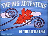 img - for The Big Adventure of the Little Leaf book / textbook / text book
