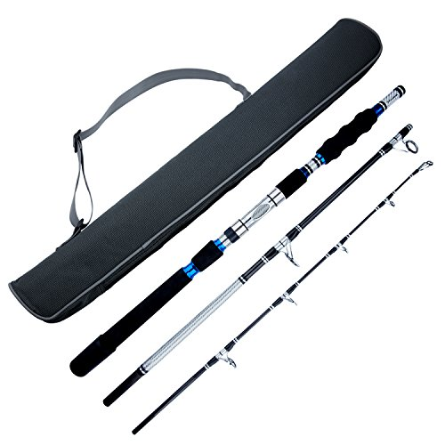 BERRYPRO 3-Piece Spinning Rod Heavy Spinning Fishing Rod Portable Fishing Rod Graphite Spin Rod (Silver 6'6'')