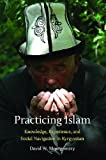 Practicing Islam: Knowledge, Experience, and Social Navigation in Kyrgyzstan (Central Eurasia in Context)