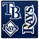 MLB Tampa Bay Devil Rays Magnet Sheet