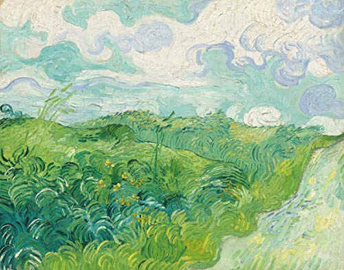 Berkin Arts Vincent Van Gogh Giclee Canvas Print Paintings Poster Reproduction(Green Wheat Fields Auvers) Large Size39 x 30.6 inches