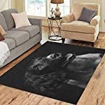 Semtomn Area Rug 3' X 5' Working English Springer Spaniel Puppy Six Month Old Studio Home Decor Collection Floor Rugs Carpet for Living Room Bedroom Dining Room 4