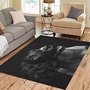 Semtomn Area Rug 3' X 5' Working English Springer Spaniel Puppy Six Month Old Studio Home Decor Collection Floor Rugs Carpet for Living Room Bedroom Dining Room 3