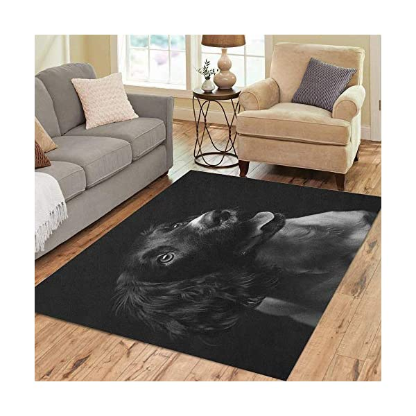 Semtomn Area Rug 3' X 5' Working English Springer Spaniel Puppy Six Month Old Studio Home Decor Collection Floor Rugs Carpet for Living Room Bedroom Dining Room 1