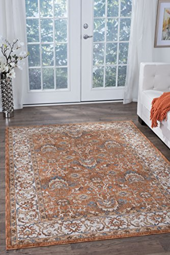 Frances Traditional Oriental Spice Rectangle Area Rug, 8