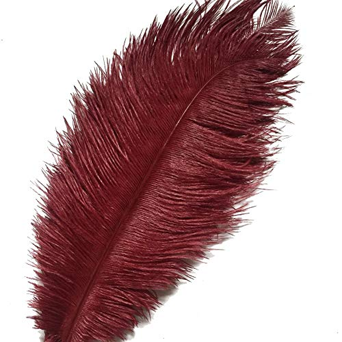 (KOLIGHT Set of 10pcs 12''~14''(30~35cm) Natural Ostrich Feathers for DIY Home Wedding Party Office Decoration (Burgundy))