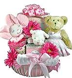 Girly Ballerina New Baby Gift Basket