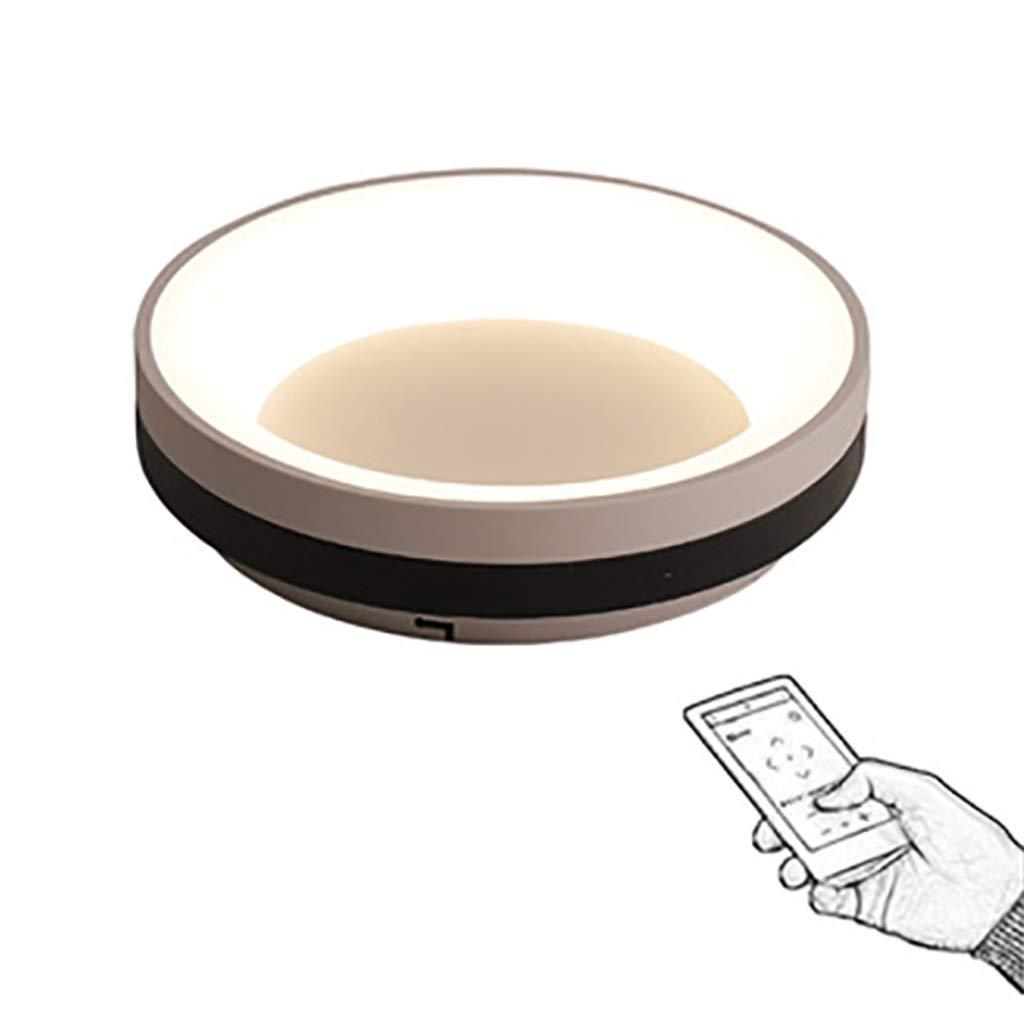 天井照明 シーリングライト、モダンクリエイティブLED調光可能シーリングランプ、錬鉄製アクリル、リビングルームのインテリア寝室研究廊下の照明 シーリングライト (Color : Stepless dimming, Size : 25cm) 25cm Stepless dimming B07T6YPMX4