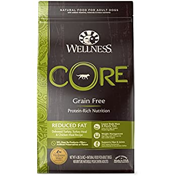 Wellness CORE Natural Reduced Fat Grain Free Dry Dog Food, Turkey & Chicken, 4-Pound Bag