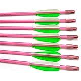 "GPP28"" Fiberglass Archery Target Arrows - Practice Arrows or Youth Arrows for Recurve Bow"