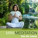 Mini Meditation: Sinn des Lebens Hörbuch von Andreas Schütz Gesprochen von: Marcel Schieback