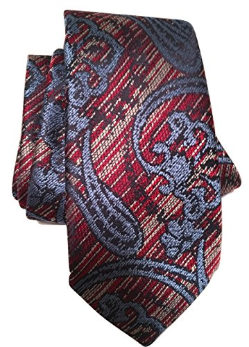 zegna ties for men - 2