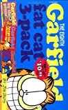 Fat Cat, Jim Davis, 0345426010