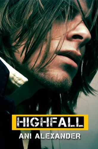 Book cover image for Highfall
