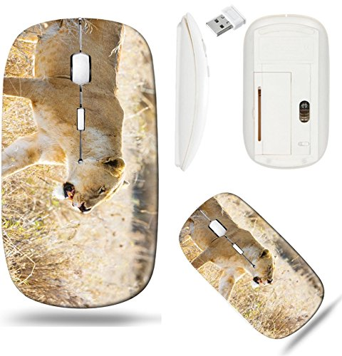 Liili Wireless Mouse White Base Travel 2.4G Wireless Mice with USB Receiver, Click with 1000 DPI for notebook, pc, laptop, computer, mac book ID: 24709525 Close up of lioness with a nose injury in Ser ()