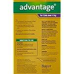 Advantage-Soluzione-antiparassitaria-spot-on-da-80-mg-per-gatti-e-conigli-domestici-di-peso-superiore-ai-4-kg