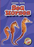Sea Horses, Ann Herriges, 1600140203