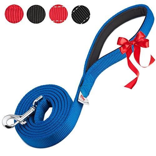 PetsLovers 2-Layer Dog Leash - Extra Durable Webbing, Padded Handle - 6 (Blue Dog Leash)