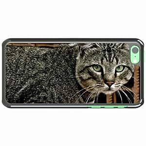iPhone 5C Black Hardshell Case tabby eyes lie Desin Images Protector Back Cover