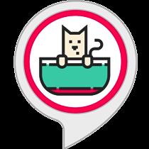 Ambient Sounds: Cat Sounds
