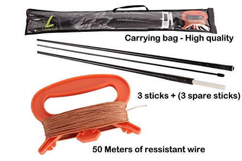 Flying Eagle Kite Kit By Livertol High Quality Strongest Bird
