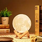 Moon lamp - Lampwin 3.9 Inch 3D Printing Full Moon Light USB Rechargeable Dimmable LED 3D Lantern, Touch Switch Warm / Cool White Crescent Enchanting Moon Night Light for Baby Nursery Kids Bedroom Home (3.9inch/10cm)