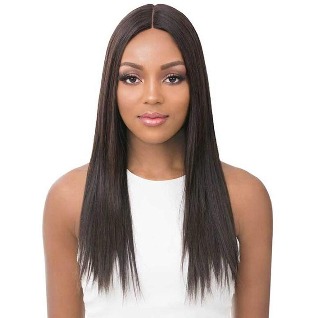 DDLmax 22'' Ombre Wig Brown Middle Part Long Straight Synthetic Daily Party Cosplay Halloween Costume Wigs for Women by DDLmax