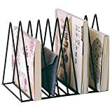 Magazine Holder Triangle Shape Document File Stand, 9 Slot Newspaper Organizer Journals Book Rack for Office or Home Decor (Black)