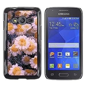 Be Good Phone Accessory // Dura Cáscara cubierta Protectora Caso Carcasa Funda de Protección para Samsung Galaxy Ace 4 G313 SM-G313F // Flowers Daisies Winter Ice Art