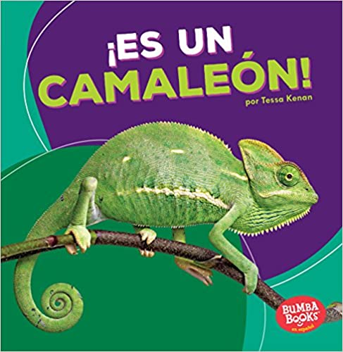 Its a Chameleon! /¡es Un Camale/ón!