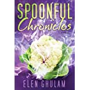 Spoonful Chronicles: a novel about food