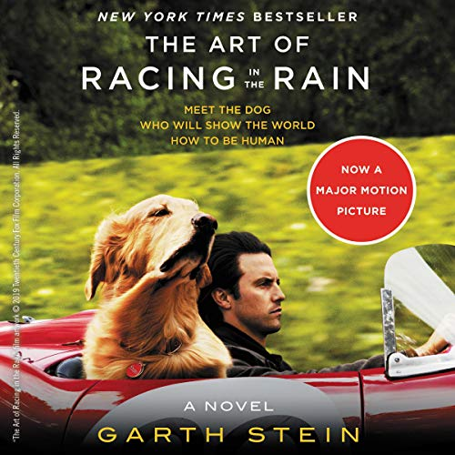 The Art of Racing in the Rain ()