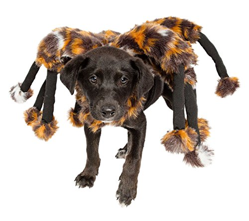 Spider Dog Costume - Cat Costume - Pet Costumes by Pet Krewe by Pet Krewe (Image #5)