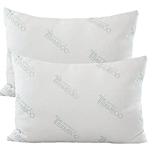 Essence of Bamboo Derived Rayon Pillows - The Original Premium Hypoallergenic Down Alternative Fiber Pillow - Designed and Filled in USA (Queen 2-Pack) Best Sleep Ever