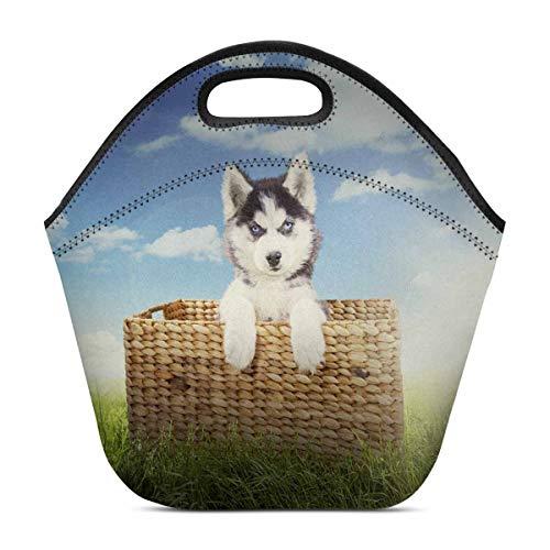 InterestPrint Neoprene Lunch Bag Husky Dog Wicker Basket Insulated Lunchbox Tote Bag