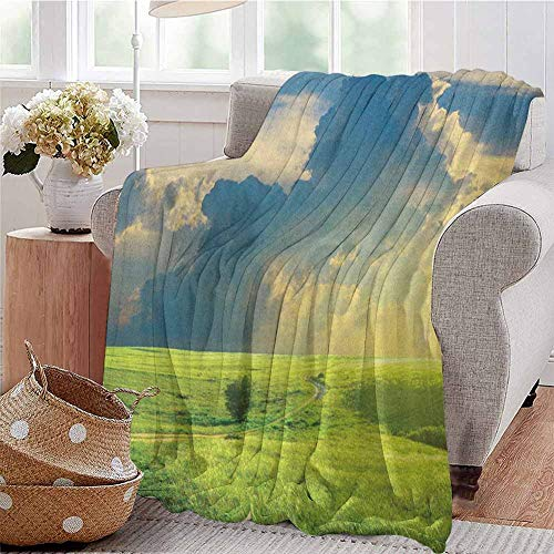 Nature Comfortable Large Blanket Summer Landscape with The Grass Road Cloudscape and Rural Novelty View Image Print Microfiber Blanket Bed Sofa or Travel W80 x L60 Inch Blue Green