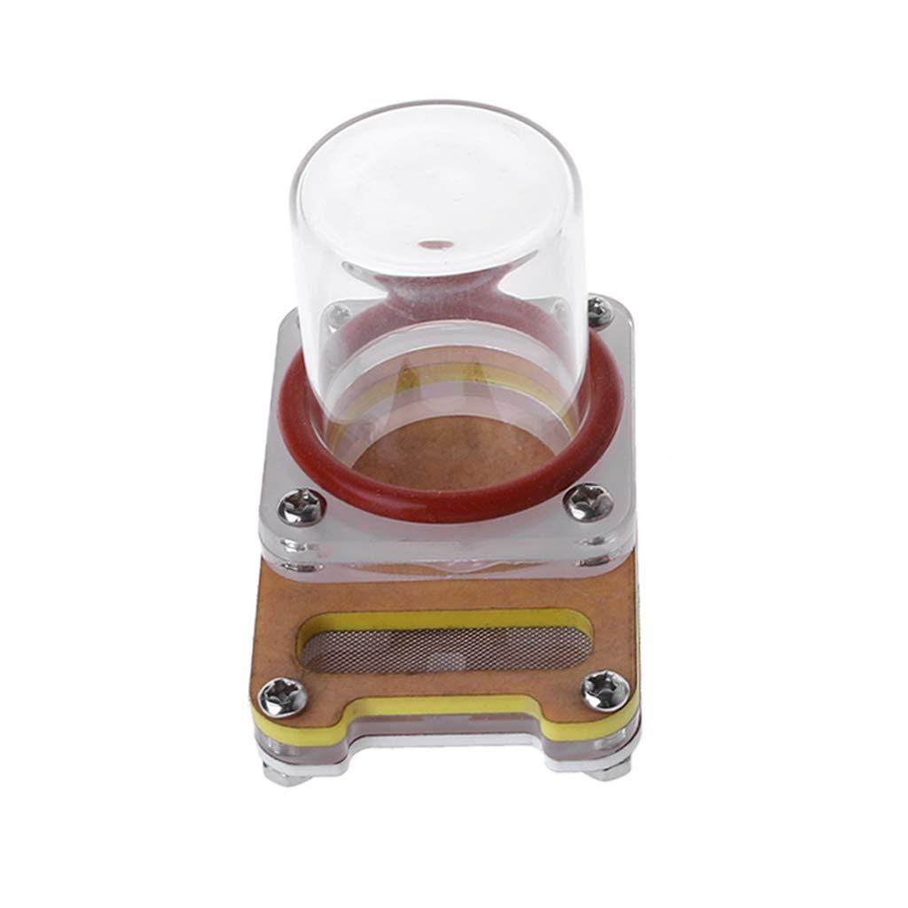 ECMQS Fourmi Antivoire Acrylique Fourmi Fourrage Alimentation Bol à Boire pour Nid De Fourmis Bol à Boire pour Insectes (Jaune)