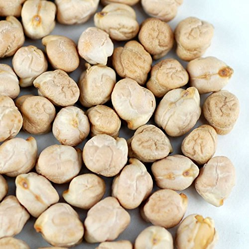 Dried Garbanzo Beans- Organic Sprouting Seeds - 35 Lbs - Handy Pantry Brand - Dry Garbonzo Bean/Seeds - For Planting, Gardening, Hummus, Cooking, Food Storage, Sprouts by Handy Pantry (Image #1)