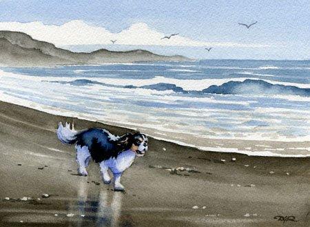 (Cavalier King Charles Spaniel At the Beach Art Print By Watercolor Artist DJ Rogers )