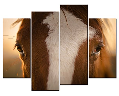 - SmartWallArt - Animal Paintings Wall Art a Reddish Brown Horse with White Face Has Gentle Eyes 4 Panel Picture Print on Canvas for Modern Home Decoration