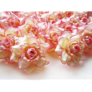 "(100) Silk Cream Pink Edge Roses Flower Head - 1.75"" - Artificial Flowers Heads Fabric Floral Supplies Wholesale Lot for Wedding Flowers Accessories Make Bridal Hair Clips Headbands Dress 3"