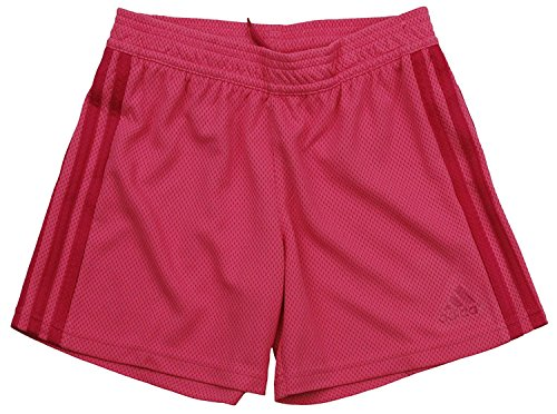 Girls Stripe Mesh Shadow (Adidas Big Girls Shadow Shorts (Large (14), Bahia Pink))