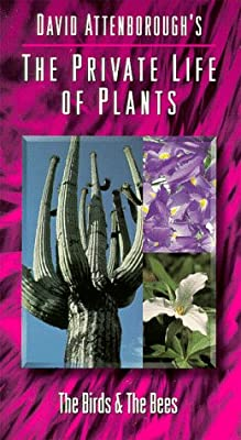 Private Life of Plants 3: Birds & Bees [VHS]