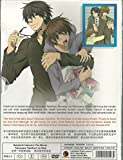 SEKAIICHI HATSUKOI THE MOVIE : YOKOZAWA TAKAFUMI NO BAAI - COMPLETE MOVIE SERIES DVD BOX SET