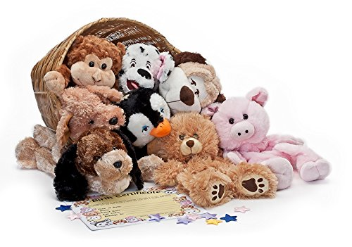BEAREGARDS.COM Unstuffed Animal Make a Bear Party Kits (Lot of 6 Kits) (Make Your Own Teddy Bear At Home)