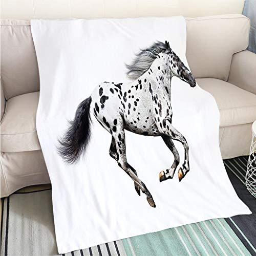 Super Soft Throw Thicken Blanket Horse Decor Powerful Appaloosa Stallion Graceful Royal Pure Blood Champion Equine Print Decorative Black Hypoallergenic - Plush Microfiber Fill - Machine Washable