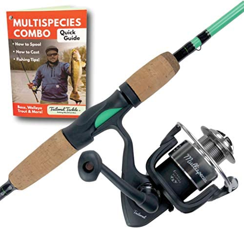 Tailored Tackle Universal Multispecies Rod and Reel Combo Fishing Pole Freshwater Inshore Saltwater Poles 6 Ft 6 in Rods Medium Fast Action Spinning Reels 7BB Combos L R Handed