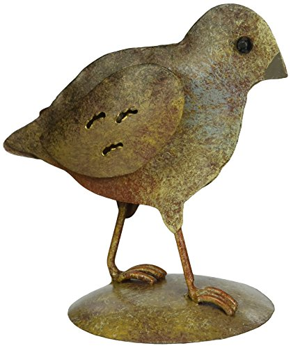il Chick (Southwestern Gift)